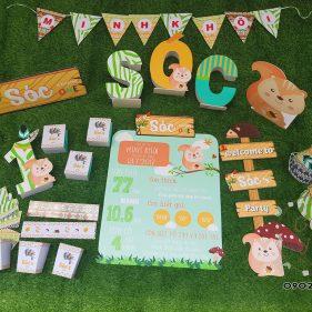 Set trang trí sinh nhật chủ đề Sóc