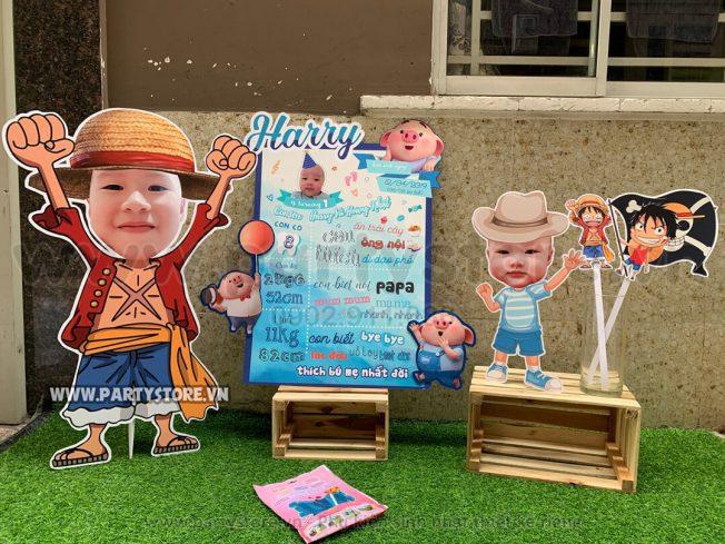 Set trang trí sinh nhật chủ đề Heo Con - bé Harry