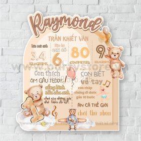 Bảng Thông Tin Bé chủ đề gấu phi công (Raymond)